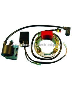MS5894 - Kit Stator, CDI, Bobine. Diamètre intérieur 58mm. Platine 94mm. Résistance 360 ohms.