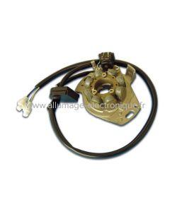 ST1197L - Stator d'allumage + éclairage complet  -  Honda: CR125 (97-98)