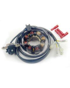 Stator d'allumage pour moto Honda CRF 250 (04-09) et CRF 450 (01-09) - ST1495