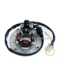 Stator d'allumage + eclairage yamaha YZF250-400-426-450 - ST4438L